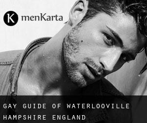 gay guide of Waterlooville (Hampshire, England)
