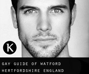 gay guide of Watford (Hertfordshire, England)